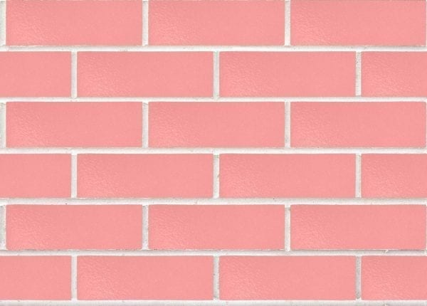Camilla Rosado NSW Bricks