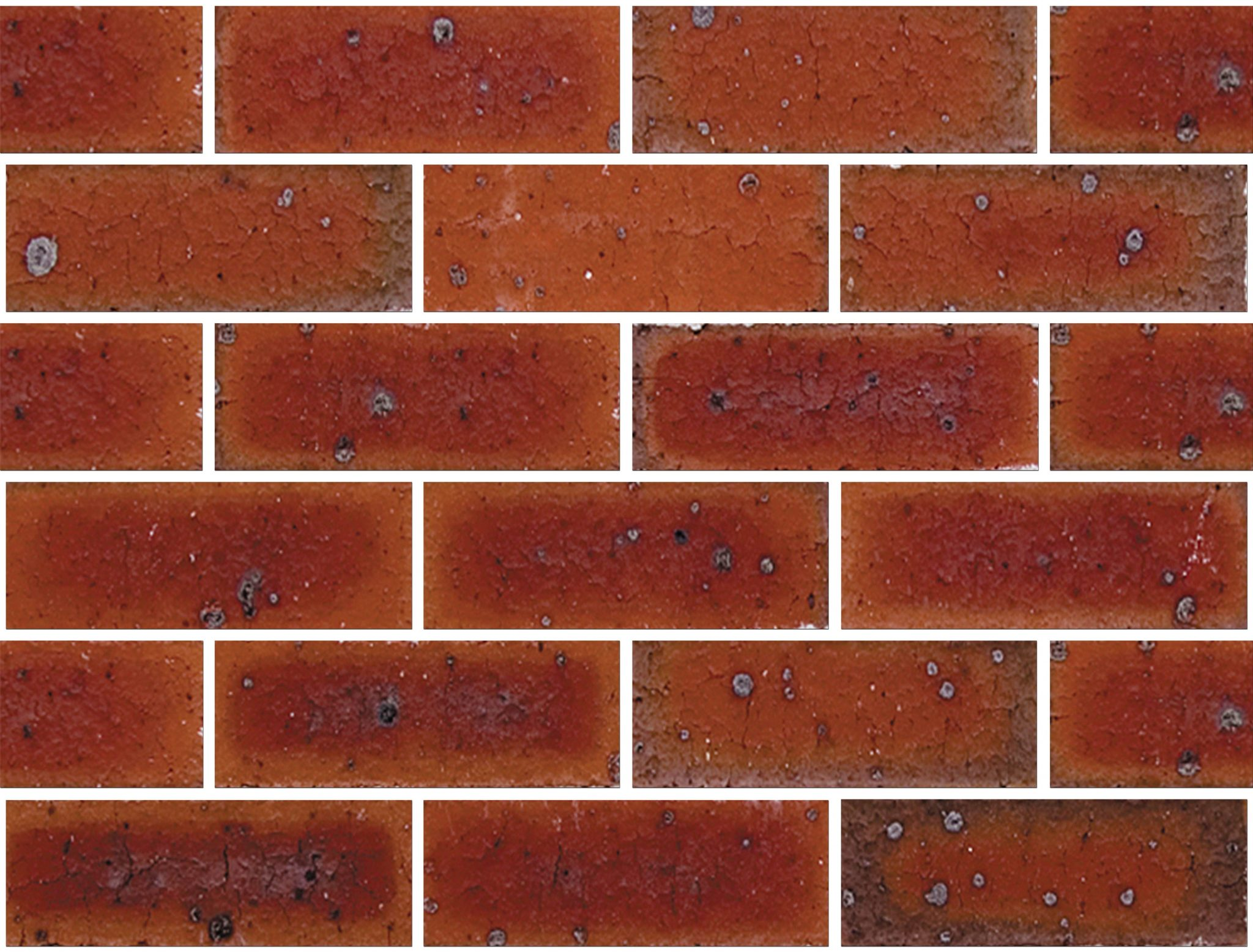 TheAvenueCharlton230x76-110-240 - NSW Bricks